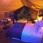 Button Quail Luxury Tents
