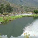 du-toitskloof-fishing